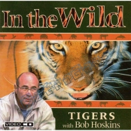 In The Wild - Tigers